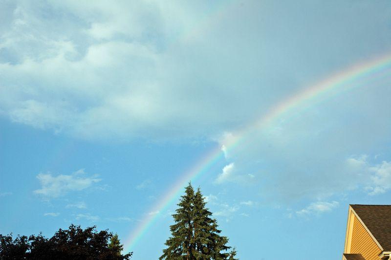 2010 July Pool DeCordova Rainbow 066