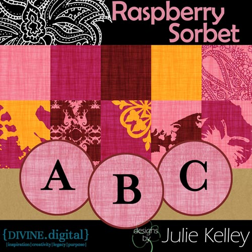 Juliekelley_raspberryprev500
